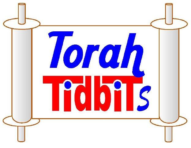 Torah Tidbits Logo