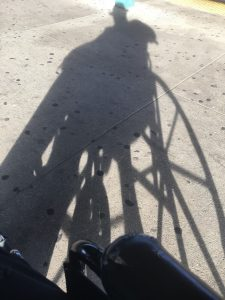Author silhouette selfie