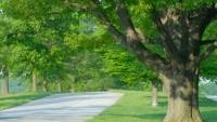 White Oak, PA