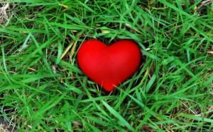 heartgrass