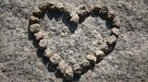 inside_heart