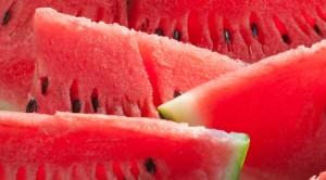 wmelon_life